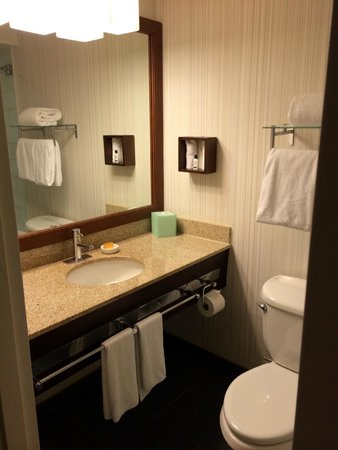 Hyatt Regency New Brunswick: bathroom