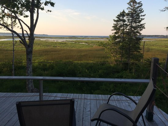 Castalia Marsh Retreat: The deck over the marsh
