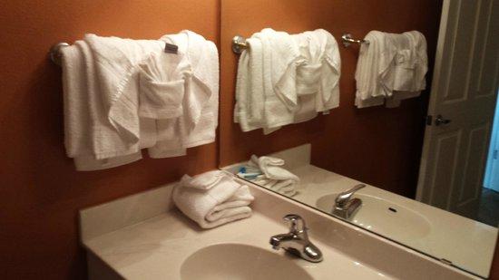Shores of Panama Resort: Bathroom