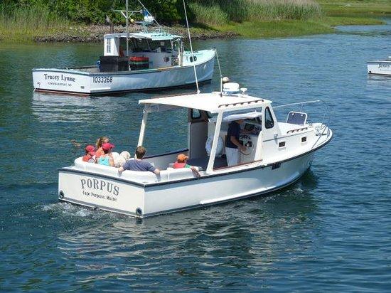 The Porpus: Kennebunkport Coastal Boat Tours