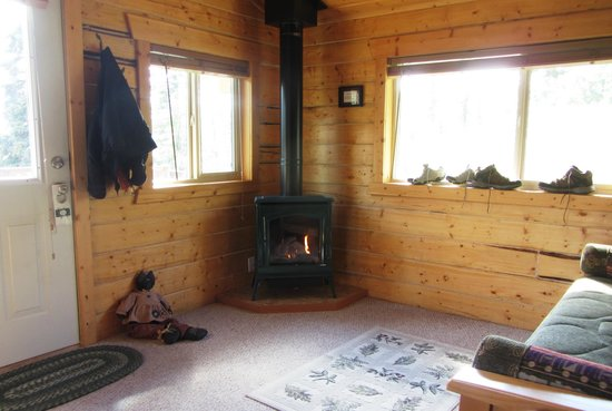 Tundra Rose Guest Cottages: Very cute and functional fireplace heater, great living area with separate bedroom