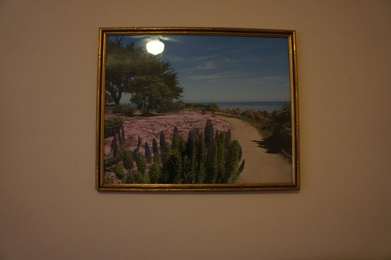 Hotel Mayflower : picture in my room