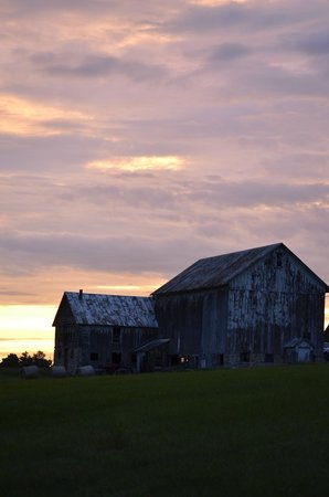 Pinehaven Bed and Breakfast: Sunset on the barn next door