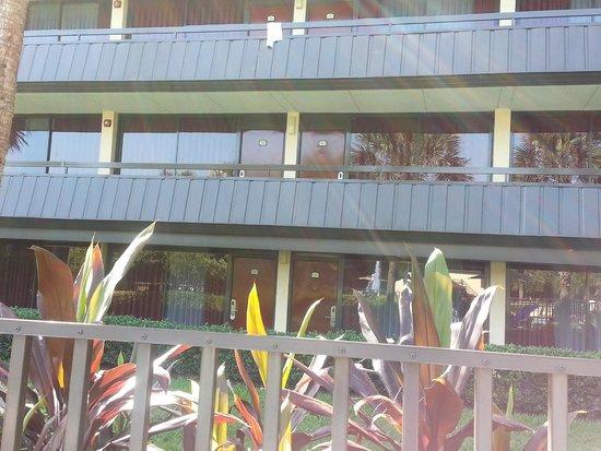 Rosen Inn International: our room