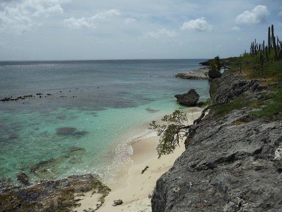Bonaire National Marine Park: Wayaka 2 spiaggia