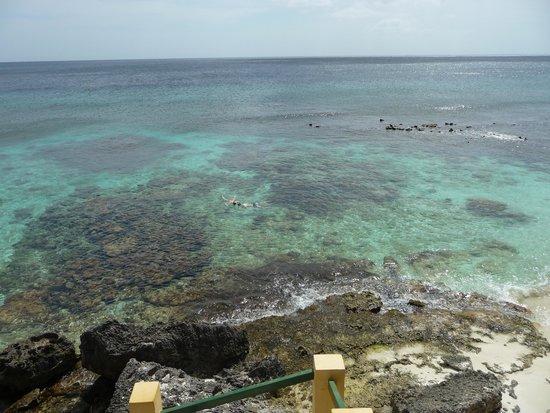 Bonaire National Marine Park: Wayaka 2 snorkeling