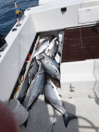 L & M Charters & Lodge: Limits of Kings and bonus Coho