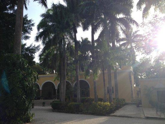 Hacienda Chichen : Grounds