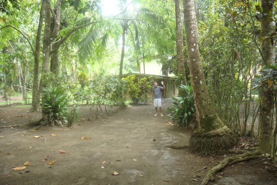 Charlie's Jungle House: Charlie on the lane of the property