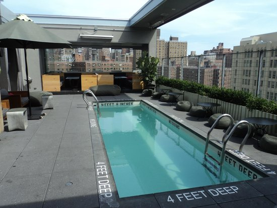 Rooftop pool picture of hotel americano new york city for Hotel americano pool