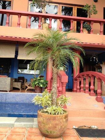 Casa Bella Rita Boutique Bed & Breakfast: Sitting on the back terrace