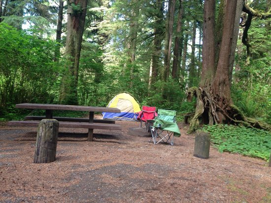 Great camping near rialto beach review of mora for Cabin rentals olympic national forest