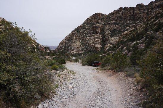 Pink Jeep Tours Las Vegas: Offroad