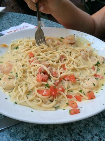 Harry's Seafood Bar and Grille : Shrimp Scampi