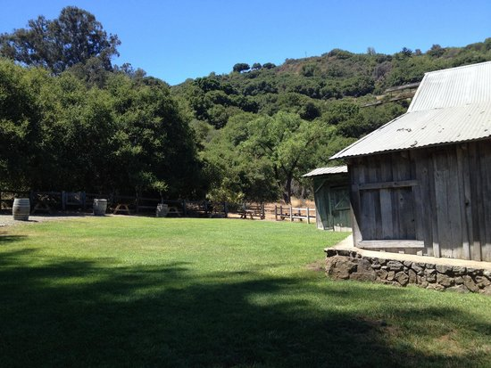 Picchetti Winery: Quiet picnic area today