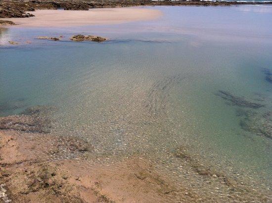 Playa Hermosa: Take a dip
