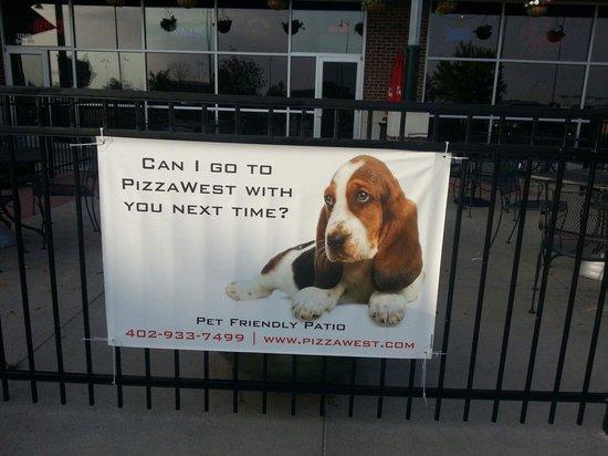 PizzaWest: Dog friendly patio seating!