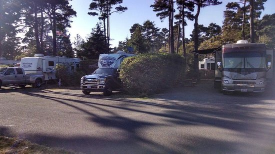 Pomo RV Park & Campground: Rv sites arn't bad. Our family stays comfortably in one for two weeks at a time