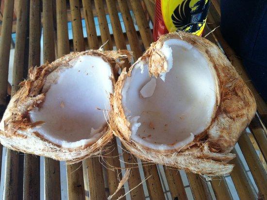 Playa Santa Teresa : coconut