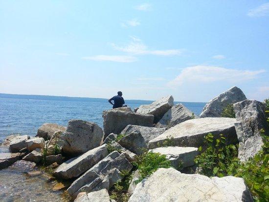 Bay Shore Inn: Rocks by the beach