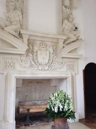 Schloss Chenonceau: Lareira
