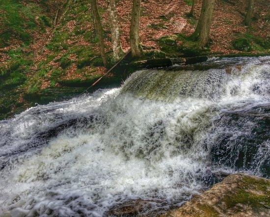 Finch Guest House: Beecher Creek Falls near the Copeland Bridge, Edinburg NY