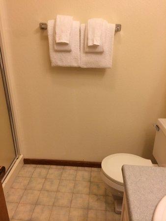 Granlibakken Tahoe : Room 64-4 bathroom for two people. Sink smelled of sewage, shower door didn't latch closed