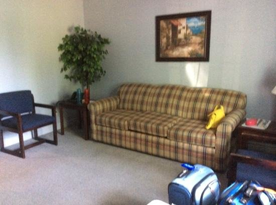 Ash Grove Inn : living room area in luxury suite .