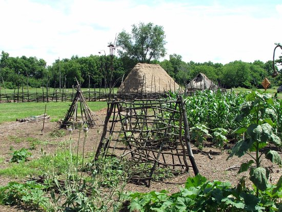 VILLAGE GARDEN Picture of SunWatch Indian VillageArchaeological