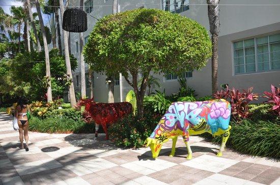 Kimpton Surfcomber Hotel: Arte
