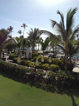 Hotel Riu Palace Punta Cana : View from room balcony