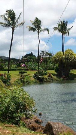 Maui Zipline Company: Do what you want