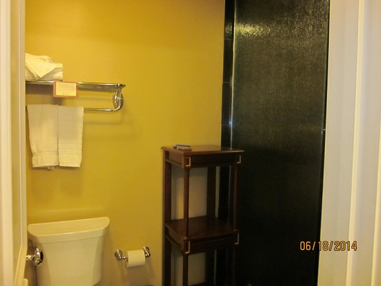 Hotel Mazarin : Beautiful Extra-Large shower