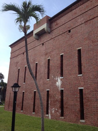 Fort East Martello Museum : Cool palm tree