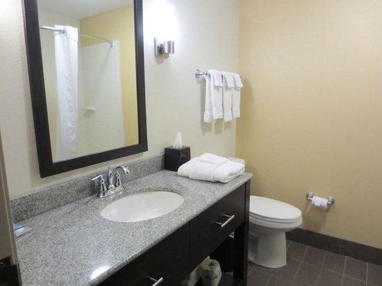 Sleep Inn & Suites : bathroom