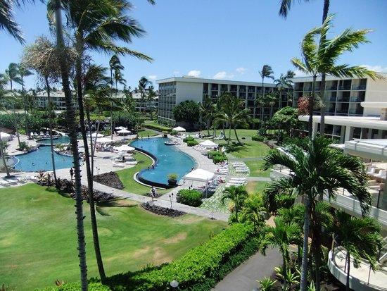 Waikoloa Beach Marriott Resort & Spa: Marriott Waikoloa Pools