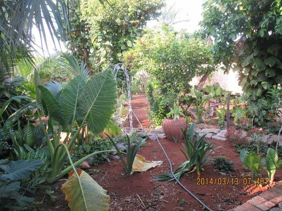 Hacienda San Pedro Nohpat: Lush and fragrant garden