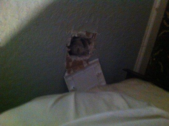 Motel Blu: Really