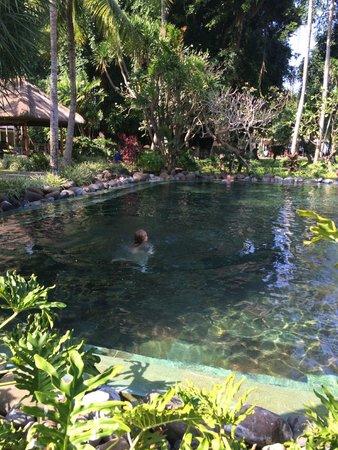 Segara Village Hotel: quieter pool area