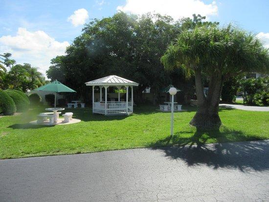 Tropical Beach Resorts: Vista do jardim
