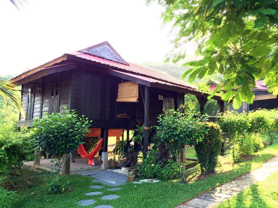 Fox Hill: Amin House