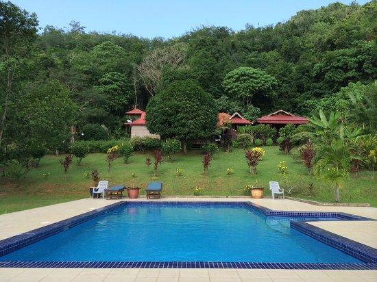 Fox Hill: The pool