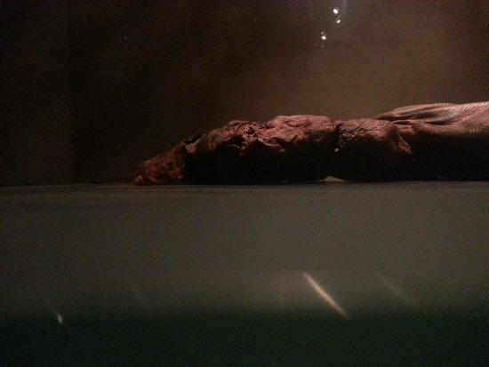 Museo Nacional de Arqueología de Irlanda: Bog Body
