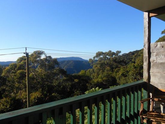 Binna Burra Mountain Lodge: View from the room in the morning.