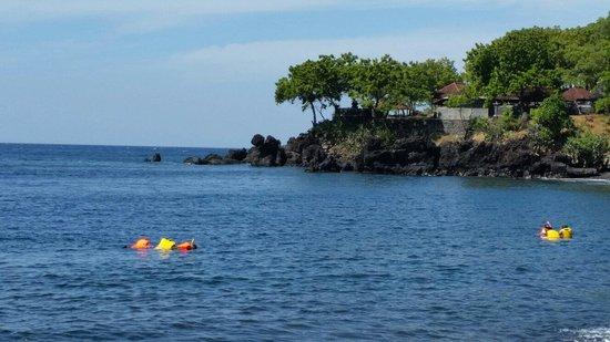 Liberty Dive Resort: Snorkelling