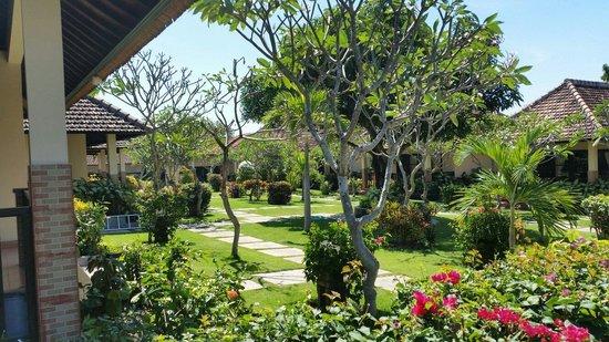 Beautiful manicured garden at Liberty Dive Resort.
