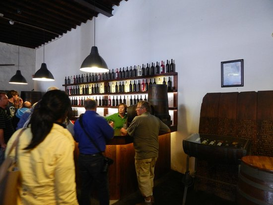 Lanzarote Experience Tours: The wine stop... interesting to see