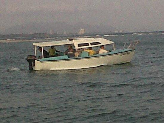 Bay View Hotel: Paseos en lancha por la costa, y dias de pesca.