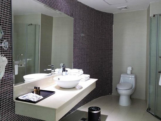 Landscape Hotel: Bathroom