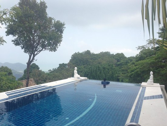 Malihom Private Estate: Pool view